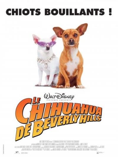 L'affiche de Le Chihuahua de Beverly Hills