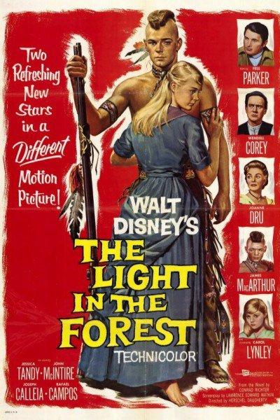 L'affiche de Lueur dans la forêt