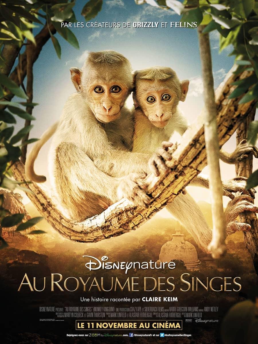 L'affiche de Au Royaume des Singes