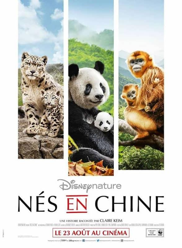 L'affiche de Nés en Chine