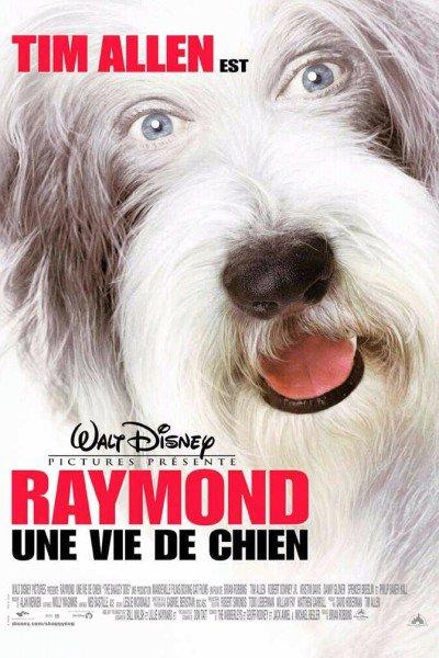 L'affiche de Raymond