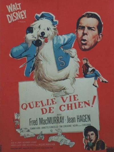 L'affiche de Quelle vie de chien!
