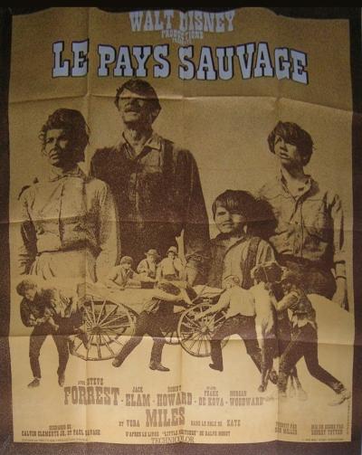 L'affiche de Le Pays sauvage