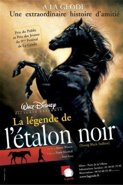 L'affiche de La légende de l'étalon noir